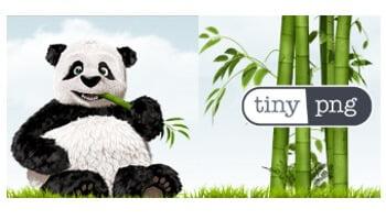 Optimizar imagenes: TinyPNG